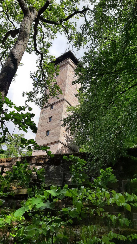 Update zum Fürther Stadtwald